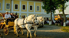 Transylvania Tour Collection | Romania Travel Tour Trips | Transylvania Tours - Castel Haller9